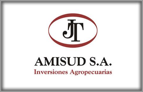 AMISUD